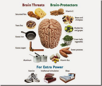 brainprotection_0