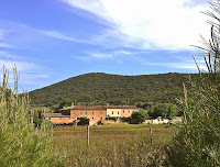 Cala di Forno 2_Magliano in Toscana_13