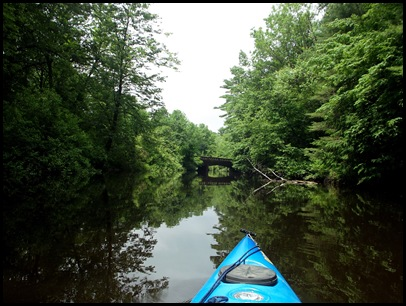 Kayaking the Exeter River 013