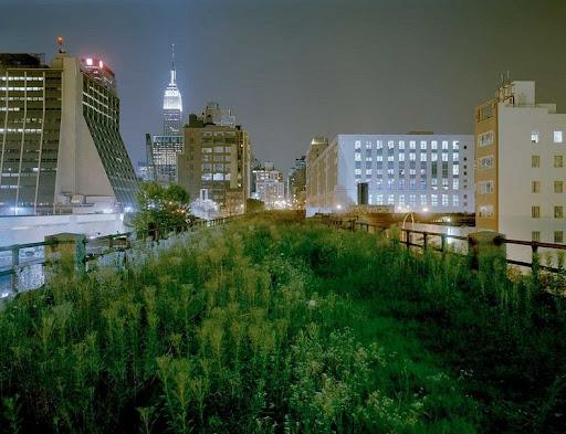 High Line New York 13