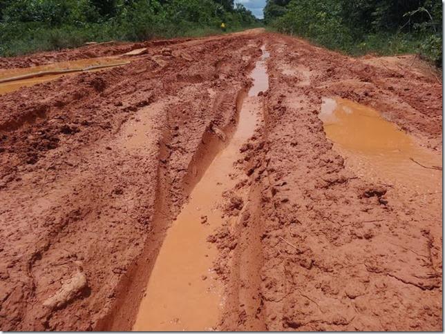 BR-319_Humaita_Manaus_Day_3_DSC05631