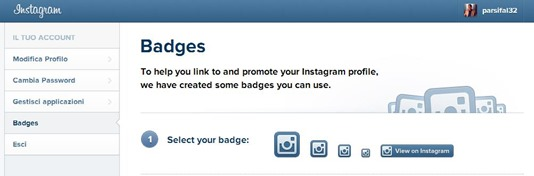 badge-instagram