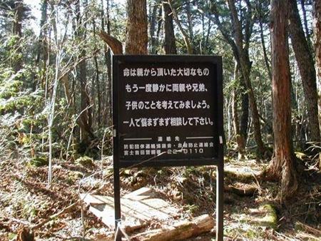 Floresta dos suicídios 08
