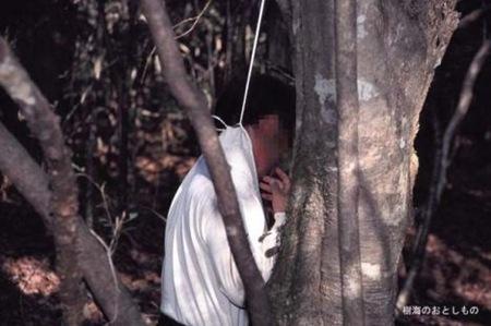 Floresta dos suicídios 04