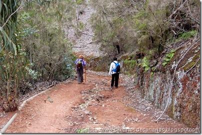 4685 Camino Barranco Oscuro