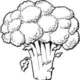 verduras-11.jpg
