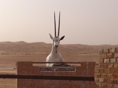 30. Statuie de oryx.JPG