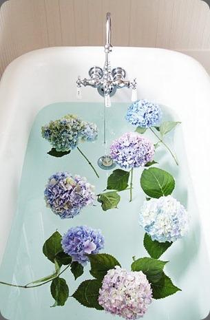 tumblr_ls2z78283x1qa9o05o1_500 tiny white daisies and wicker and stitch blogspot