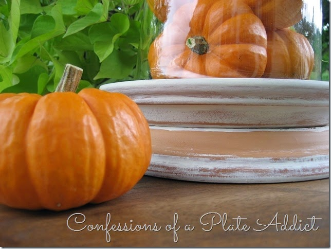 CONFESSIONS OF A PLATE ADDICT Rustic Terracotta Cloche Base