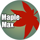 buy here pay here Florida dealer review by Maple Max