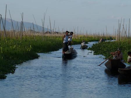 Obiective turistice Myanmar: gradini plutitoare