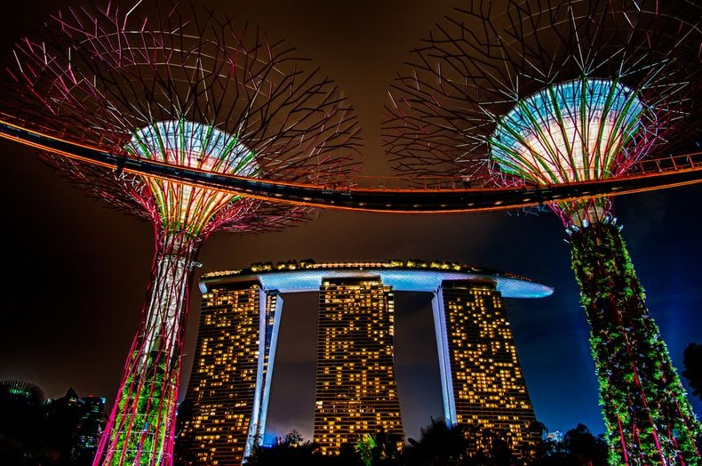 supertrees-singapore-7
