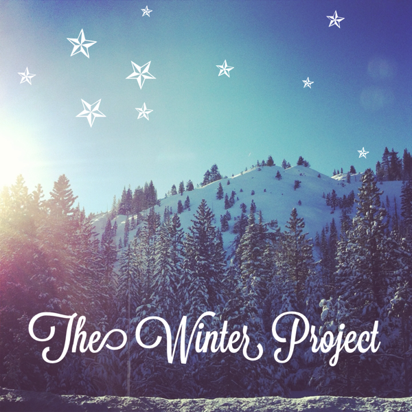 the winter project snow