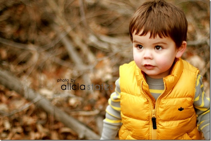 fall-atumn-utah-family-alicia-states-photography- 644-1