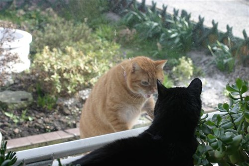 20080309 (Small)