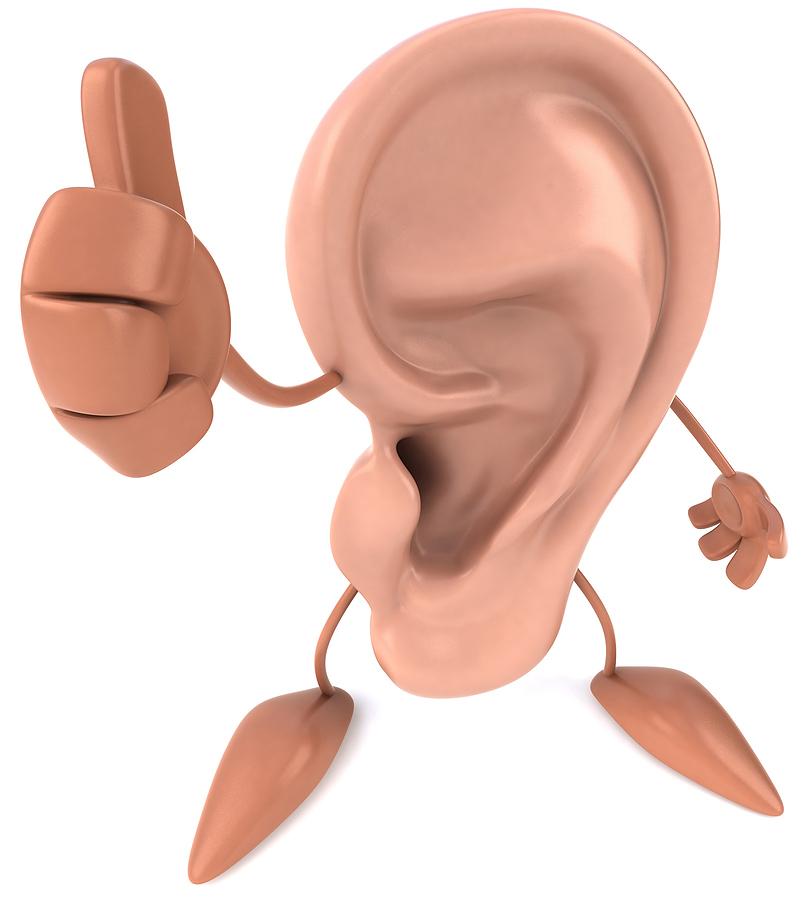 Anatomía del Oído y fisiología de la audición   So little to say ...