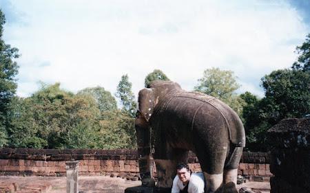 Obiective turistice Cambogia: sub un elefant la Angkor Wat