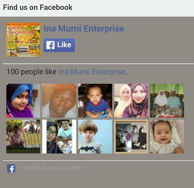 ina murni facebook pages