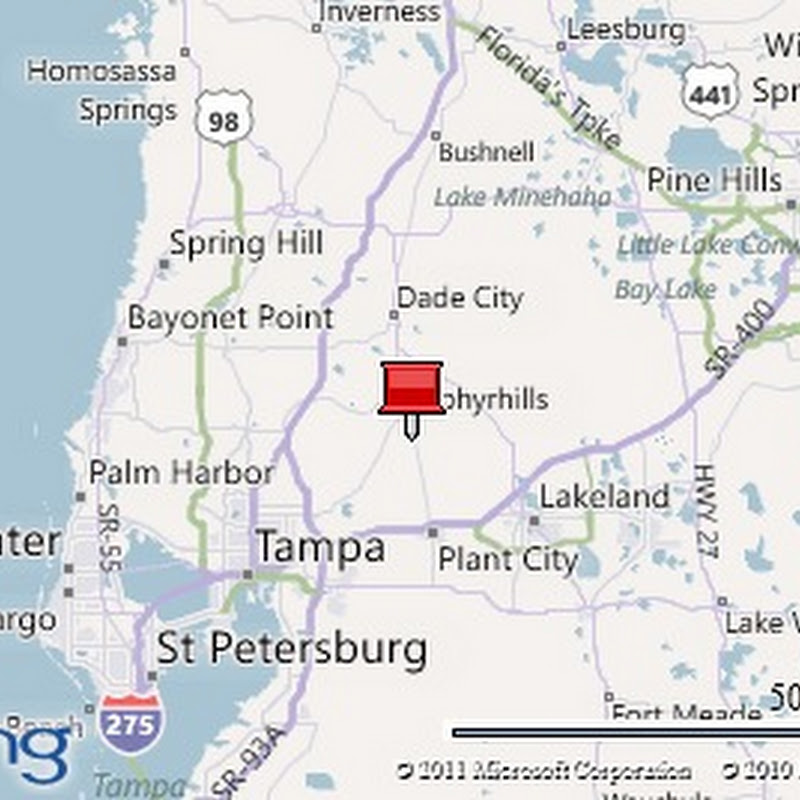 Map Zephyrhills Floridamap Of Usa on largo map, pasco county map, port orange map, temple terrace map, lake mary map, univ of tampa map, palm bay area map, st lucie map, west boca raton map, land o lakes map, crestview map, port richey map, pascagoula map, ramrod key map, sun city center map, st. armands key map, thonotosassa map, w palm beach map, frostproof map, lakewood park map,