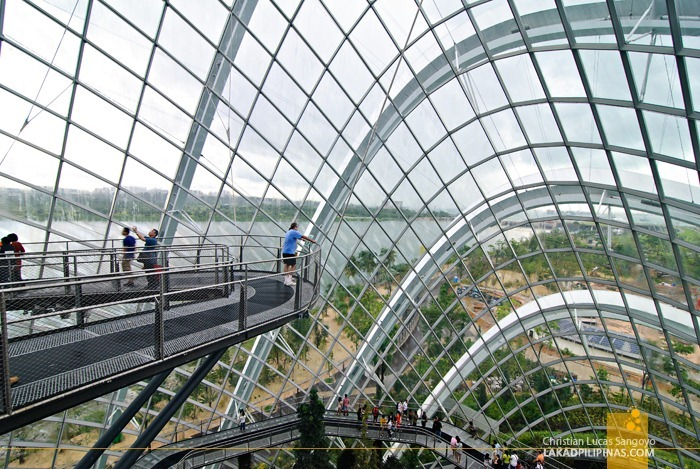 Above the Cloud Forest at Gardens by the Bay