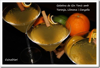 7-gin tonic jelly-ppal-