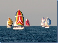3698 Ontario Sarnia - Lake Huron - sailboat race