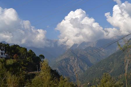 Gallu si muntii Dhauladhar langa Dharamsala - mica Lhasa