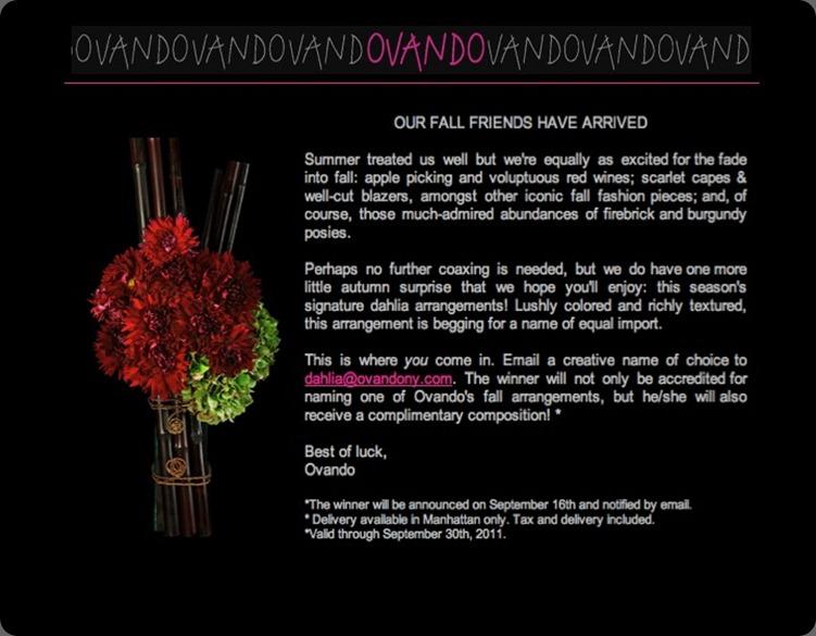 Enter to win an Ovando fall signature arrangement