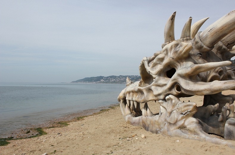 blinkbox-dragon-skull-10
