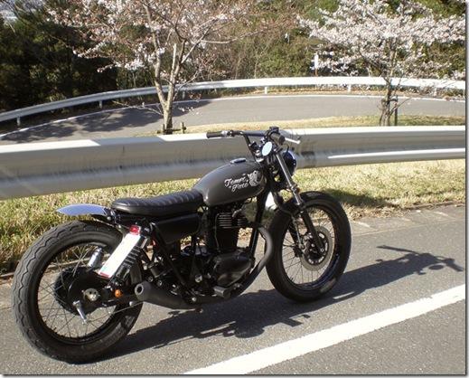 m.m.s. kawasaki 250 tr | goodhal garage
