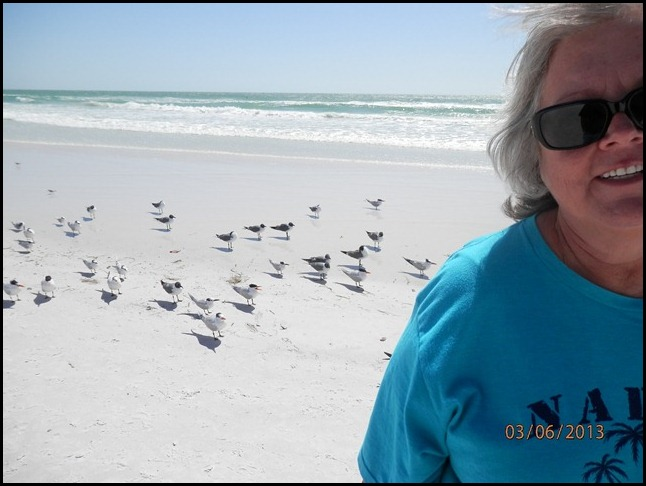 The Gulls watch as Wilma walks by