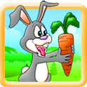 Run Run Bunny icon