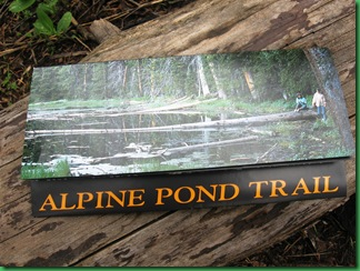 Alpine Pond 007