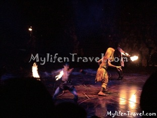 Lion King Disneyland HK 23