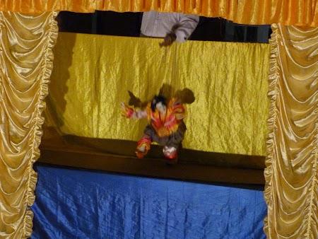 12. Spectacol marionete.JPG