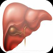 Liver Disease