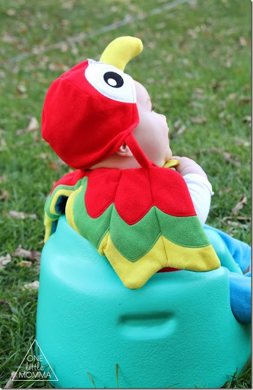 parrot-costume2
