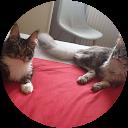 Image Google de Nathalie Pierrot