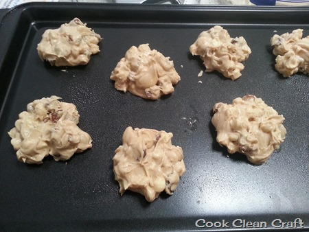 Incaberry Cookies (2)