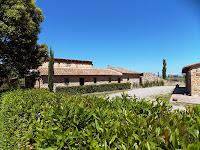 Etrusco 8_Lajatico_7