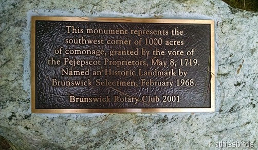 12. Brunswick town commons marker