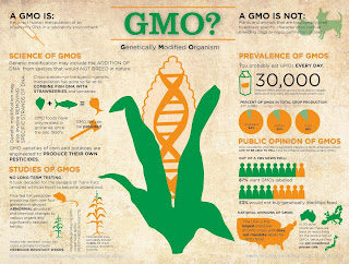 Genetically Modified Organism: What GMO is, Science & Studies