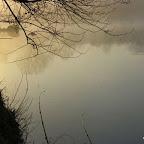 La Loire à Balbigny photo #1084