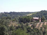 La Selva Leccio_Montaione_9