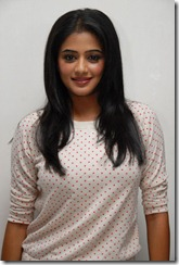 priyamani latest hot photos stills gallery cute and beautiful looking photo shoot photos stills images pics gallery