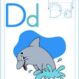 D-(delfin).jpg