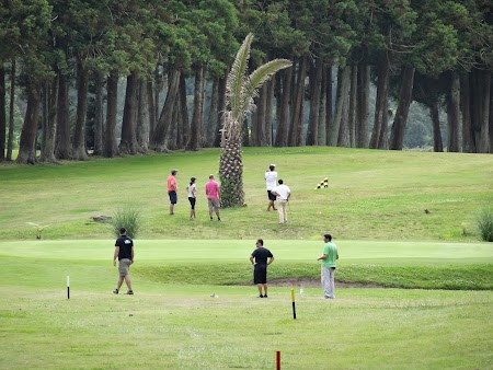 30. Teren de golf in Terceira, Azore.JPG