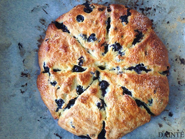 Blueberry Brie Scones Food Recipe Dainte Lifestyle Blog