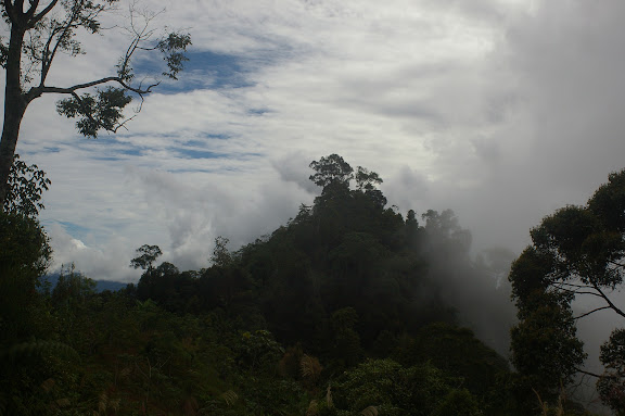 Crocker Range, à 40 km de Tambunan (Sabah, Malaisie, Bornéo), 18 août 2011. Photo : J.-M. Gayman