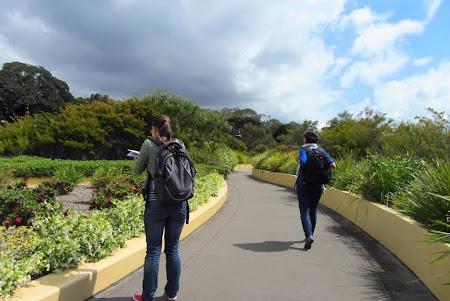Imagini Australia: Sydney  O plimbare printr-un parc alias acoperisul unei parcari
